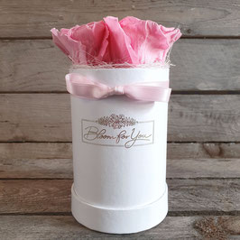 "Rosenbox ""Light-Pink"""