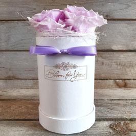 "Rosenbox ""Lilac"""