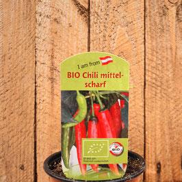 Chili mittel scharf