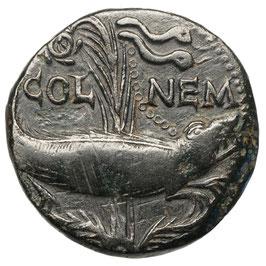 Nemausus, Augustus + Agrippa (20 BC-10 AD) Krokodil an Palme