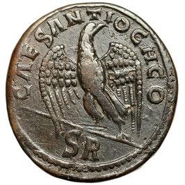 Pisidia, ANTIOCHIA. Gordian III. (238-244) Eagle