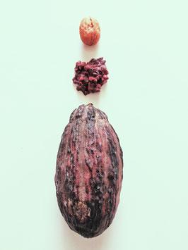 Rocher Noix et Cacao