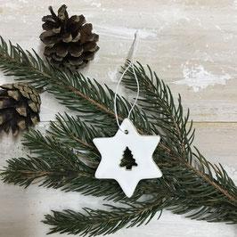 Stern mit Baum ausgeschnitten