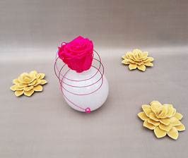 Rose ETERNELLE Rose fuchsia