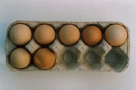 AF02: Mengenbilder Eier
