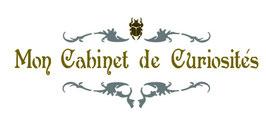Cabinet de curiosités scarabée