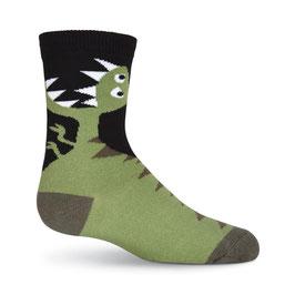 Boy's T-Rex Socks