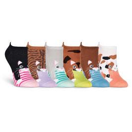 Cats 6 Pair Pack Socks