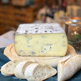 Blauschimmel - Schweizer Raclette-Käse