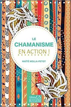 Le Chamanisme en action