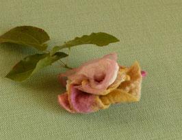 MOSCHUS - Blütenclip