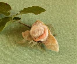 WINDRÖSCHEN - Blütenclip