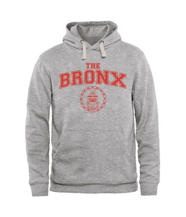 Youth The Bronx Collegiate Hoodie