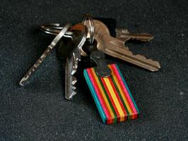 Schlüsselanhänger Lang - Gelb/Rot/Grün/Pink/Blau