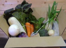 単品:野菜セットS