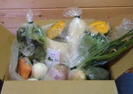 定期宅配:野菜セットM(毎月3回)