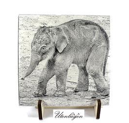 Fotogravur Elefantenbaby, Baby Elefant