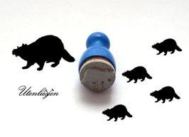 Waschbär - mini Stempel
