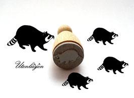 Waschbär - midi Stempel