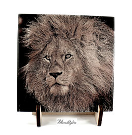 Fotogravur Löwe Löwenkopf