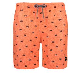 Shiwi Short Crabby