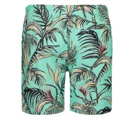 Shiwi Short Tropics