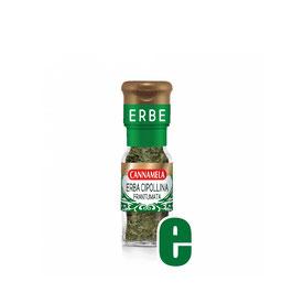 ERBA CIPOLLINA GR4
