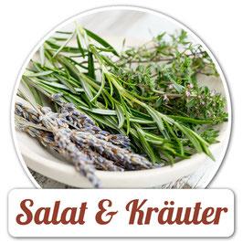 Salat & Kräuter