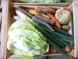 Abonnement au panier - Chaque semaine de délicieux légumes