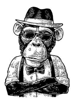 Kunstdruck - Motiv: Hipster Affe