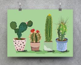 Poster - Illustration Kakteen Sukkulenten