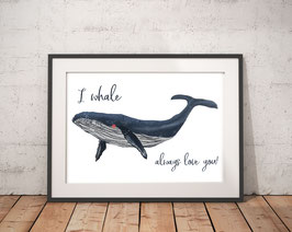 Poster - Wal - I Whale always love you