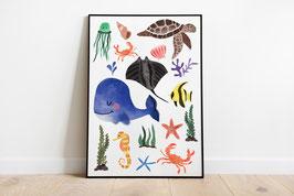 Poster -Meerestiere - Wal, Schwildkröte, Krebs, Fische, Qualle
