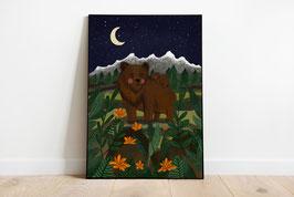 Poster - Mamabär und Babybär