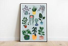 Poster - Pflanzen - Monstera - Pilea