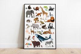 Poster - Illustration Abc Alphabet Tiere (Groß- und Kleinbuchstaben)