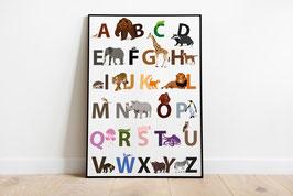 Poster - Illustration Abc Alphabet Tiere