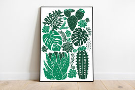 Poster - Pflanzen Monstera Kakteen Sukkulenten