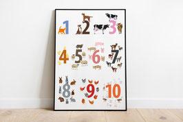 Poster - Zahlen von 1-10 Bauernhoftiere