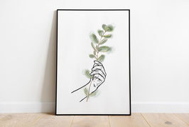 Poster - Illustration - Eukalyptus - Pflanze - Hand