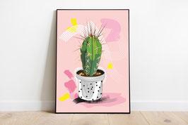 Poster Kaktus -  rosa