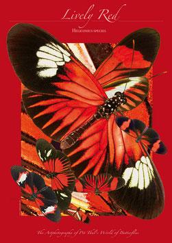 """Künstlerisches Plakat """"Lifely Red"""" - P011/02"""