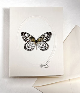 "Kunstkartenset ""Schmetterling"" AT-0022 - Idea leuconoe -"