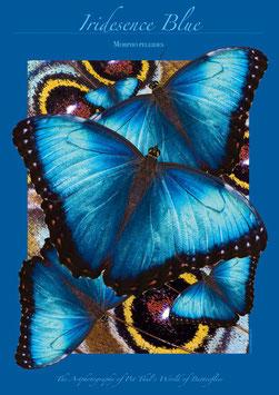 """Künstlerisches Plakat """"Iridesence Blue"""" - P011/01"""