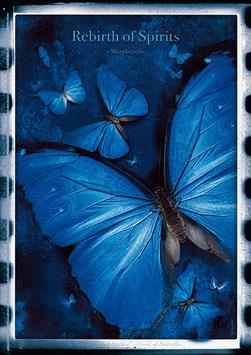 """Künstlerisches Plakat """"Rebirth Of Spirits"""" - P 018/02 -"""