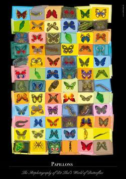 """Künstlerisches Plakat """"Papillons"""" - P009/01"""