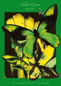 """Künstlerisches Plakat """"Silent Green"""" - P 011/03"""