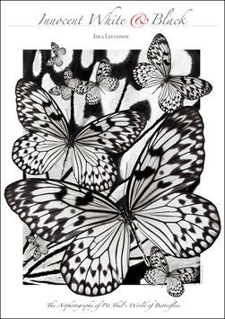 """Künstlerisches Plakat """"Innocent White & Black"""" - P013/01"""
