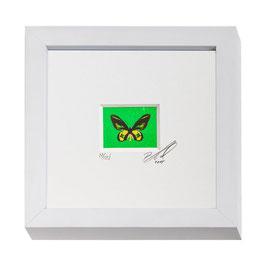 """AD-0033 - Kunstdruck """"Schmetterling"""" im Naturholzrahmen """"weiss"""" 15 x 15 cm"""