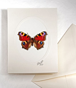 "Kunstkartenset ""Schmetterling"" AT-0013 - Inachis io -"